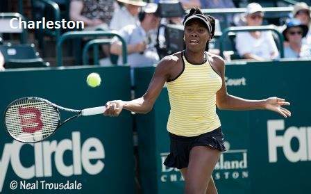 Venus Williams Charleston 2014