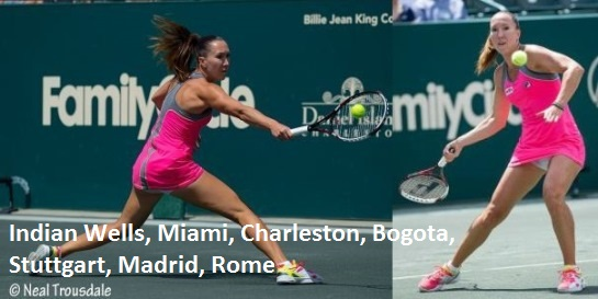 Jelena Jankovic Charleston etc dress 2014